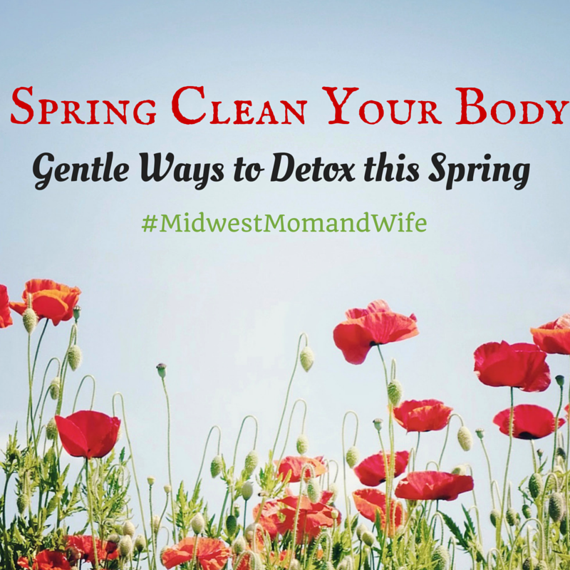 Spring Clean Your Body: Gentle Ways to Detoxify this Spring
