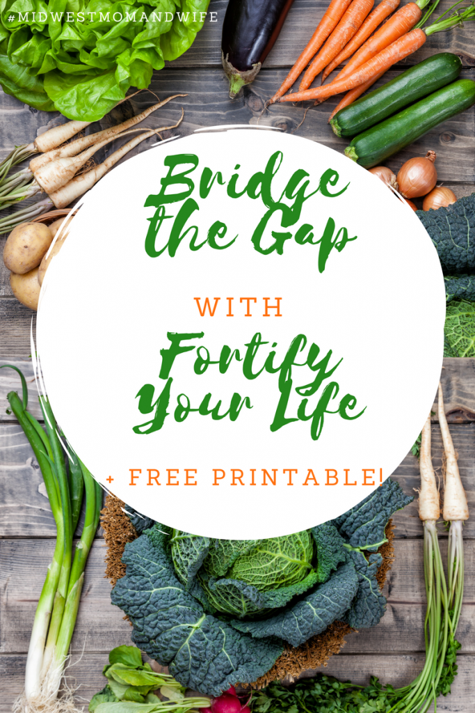 Bridge the Gap with Fortify Your Life